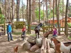 Ferienhaus: Ferienhausanlage Banzelvitzer Berge - Rügen/Rappin