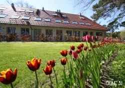 Ferienwohnung: Haus Düne 31 - Rügen/Binz