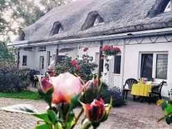 Ferienwohnung: Reetlandhaus Ruegen - Rügen/Ummanz