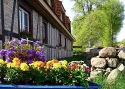 Ferienwohnung: Ferienhof Neuendorf in Lütow